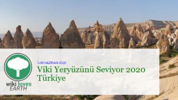 """""""Viki Yeryüzünü Seviyor"""" Türkiye'de Düzenlenecek!"""